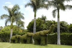 Garden elephants Stock Photography