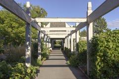 Garden Entrance. A walkway leading into a garden Royalty Free Stock Photos