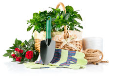 Garden equipment with flowers and green plants Royalty Free Stock Photos