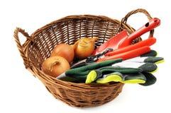 Garden equipment like gloves shovel fork, scissors Stock Image