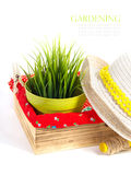 Garden equipment with plant and green plants isolated on white background Stock Photo