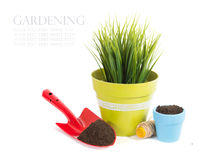 Garden equipment with plant and green plants isolated on white background Royalty Free Stock Images