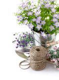 Garden equipment with violet flowers Stock Photography