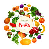 Garden and exoic fruits vector round poster Royalty Free Stock Photography