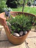 Garden fairy in broken plant pot display stock photo