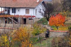 Garden in the Fall Stock Photo