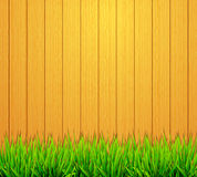 Garden fence background Stock Images