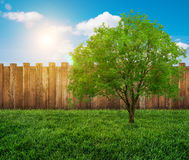 Garden fence Royalty Free Stock Photography