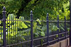 Garden fence made of iron in black. Safety for home and garden royalty free stock photos