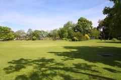 Garden field with shade Stock Photo