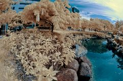 Garden in fisheye - Infrared Royalty Free Stock Photography