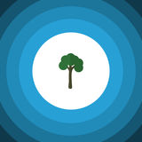 Garden Flat Icon. Evergreen Vector Element Can Be Used For Evergreen, Tree, Timber Design Concept. Royalty Free Stock Images