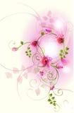 Garden flower Stock Images