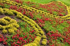 Garden flower bed Stock Photos