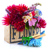 Garden flower bouquet Stock Photography