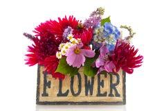 Garden flower bouquet Stock Image
