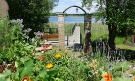 Garden, Flower, Plant, Flora stock image