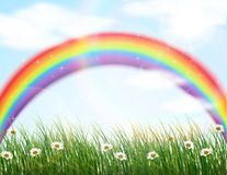 Garden flower with rainbow background Royalty Free Stock Photo