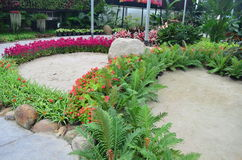 Garden flower8. Take a Photo with Dasada Gallery path Bigmountian Prachin Buri Province Stock Images