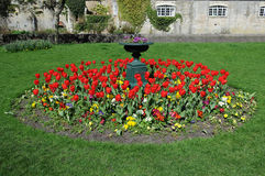 Garden Flowerbed Stock Photos