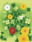 Garden Flowers. Vector illustration of various garden flowers Royalty Free Stock Images