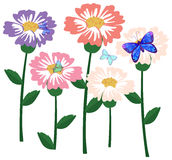 A garden of flowers with butterflies Stock Photography