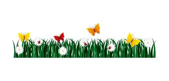 Garden flowers and butterflies. Vector illustration design Stock Images