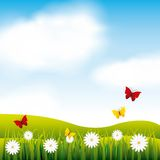 Garden flowers and butterflies. Vector illustration design Stock Image