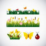 Garden flowers and butterflies. Vector illustration design Royalty Free Stock Photo