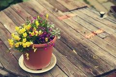 Garden flowers in a ceramic pot Stock Photo