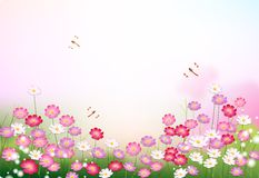 Garden with flowers and dragonflies. Garden with pink pretty flowers and dragonflies Royalty Free Stock Image