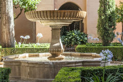 Garden with flowers and a fountain. Sunshine Stock Image