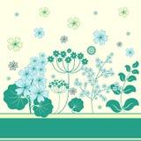 Garden flowers frame. Garden flowers and herbs frame Stock Photo