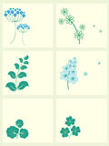 Garden flowers frames set. Royalty Free Stock Photography