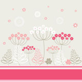 Garden flowers and herbs background. Garden flowers and herbs beige and pink colors background Royalty Free Stock Photography