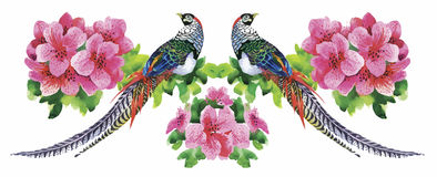 Garden flowers and pheasant birds watercolor pattern Royalty Free Stock Photo
