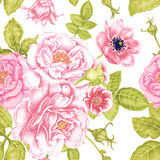 Garden flowers. Seamless floral pattern in Victorian style. Stock Photography