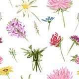Garden flowers, seamless pattern for your design. This is file of EPS10 format Stock Photography