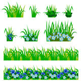 Garden flowers set. Cornflowers, green leaves, grass compositions, can be used as elements for scenes and landscape backgrounds creating. Vector illustration Royalty Free Stock Images