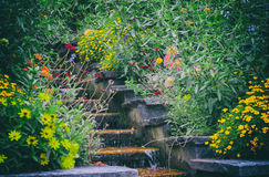 Garden flowers with small waterfall Royalty Free Stock Photo