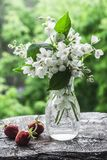 Garden flowers still life. Beauty of nature concept. Copy space.  royalty free stock image