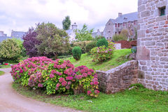 Garden with flowers. And trees on a cloudy day in France you can see houses of the village in the background Stock Image