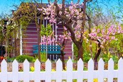 Garden flowers and trees in the spring royalty free stock image