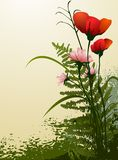 Garden flowers vector Royalty Free Stock Photography