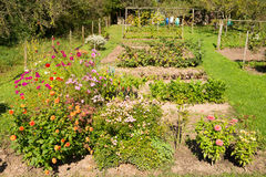 Garden with flowers, vegetable and fruits Stock Images