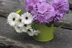 Garden flowers in a watering-can Royalty Free Stock Image