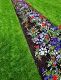 Garden of Flowers in Yard Stock Image