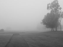 The garden of the fog. Too much fog makes people scary, the garden of the fog Stock Images