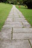 Garden footpath Stock Image