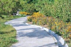 Garden footpath Royalty Free Stock Photo